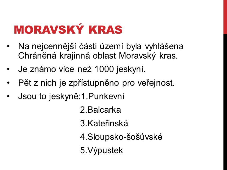 MORAVSKÝ KRAS Na nejcennější části území byla vyhlášena Chráněná krajinná oblast Moravský kras. Je známo více než 1000 jeskyní. Pět z nich je zpřístup