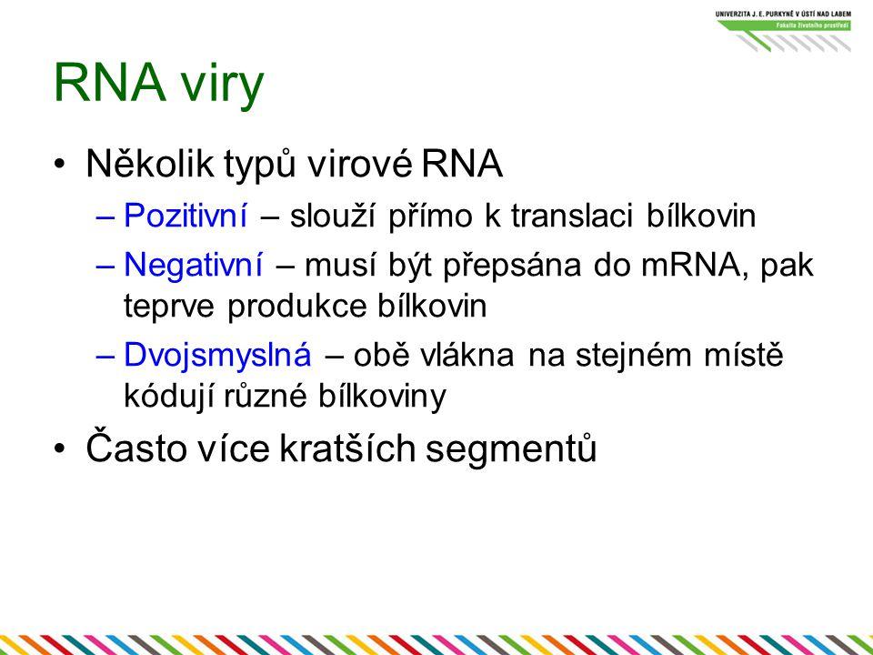 RNA viry Několik typů virové RNA –Pozitivní – slouží přímo k translaci bílkovin –Negativní – musí být přepsána do mRNA, pak teprve produkce bílkovin –Dvojsmyslná – obě vlákna na stejném místě kódují různé bílkoviny Často více kratších segmentů