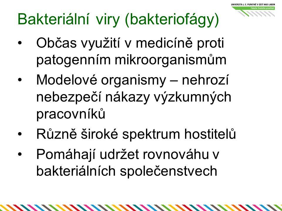 Bakteriální viry (bakteriofágy) Občas využití v medicíně proti patogenním mikroorganismům Modelové organismy – nehrozí nebezpečí nákazy výzkumných pracovníků Různě široké spektrum hostitelů Pomáhají udržet rovnováhu v bakteriálních společenstvech