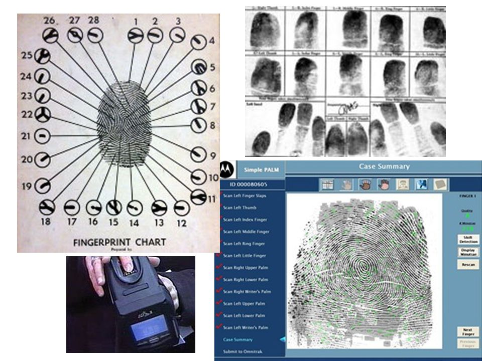 Funkční zkoušky: fyziologické, biochemické, chemické, vedení zvuku lebkou, (glykémie, cholesterolémie, …) denzitometrie elektrodiagnostické (skin Diagnistic SD 27- potivost nohou) plantograf – systém sledující rozložení tlaku (nohou) dynamika chůze – trojrozměrné sledování infračervenými kamerami