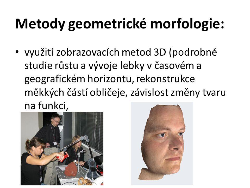 Metody geometrické morfologie: využití zobrazovacích metod 3D (podrobné studie růstu a vývoje lebky v časovém a geografickém horizontu, rekonstrukce m