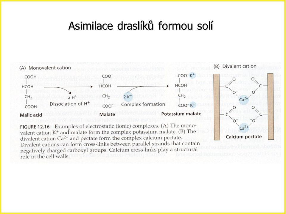 Asimilace draslíků formou solí