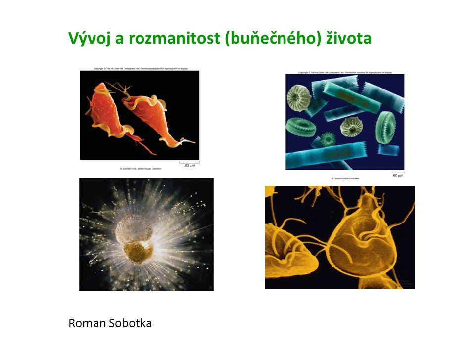 Vývoj a rozmanitost (buňečného) života Roman Sobotka
