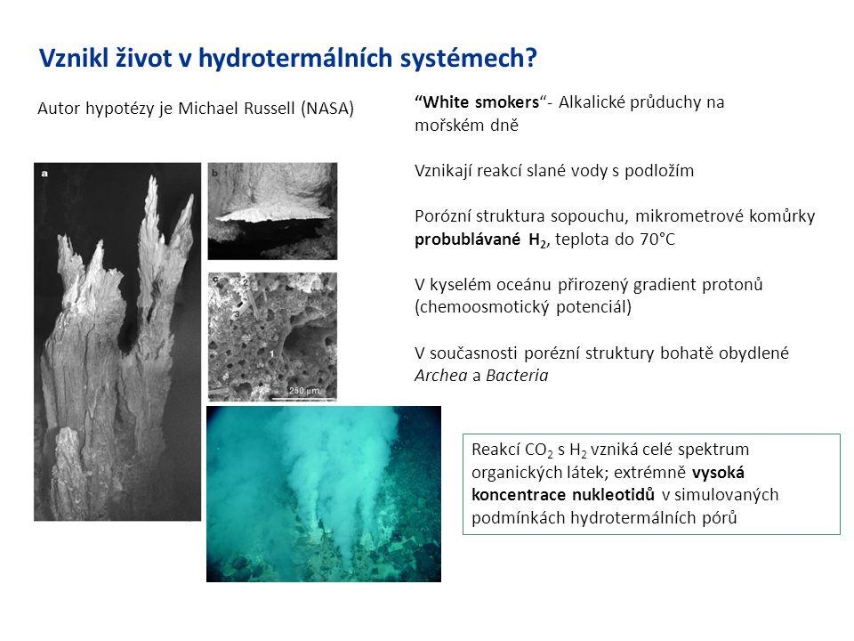 """Vznikl život v hydrotermálních systémech? Autor hypotézy je Michael Russell (NASA) """"White smokers""""- Alkalické průduchy na mořském dně Vznikají reakcí"""