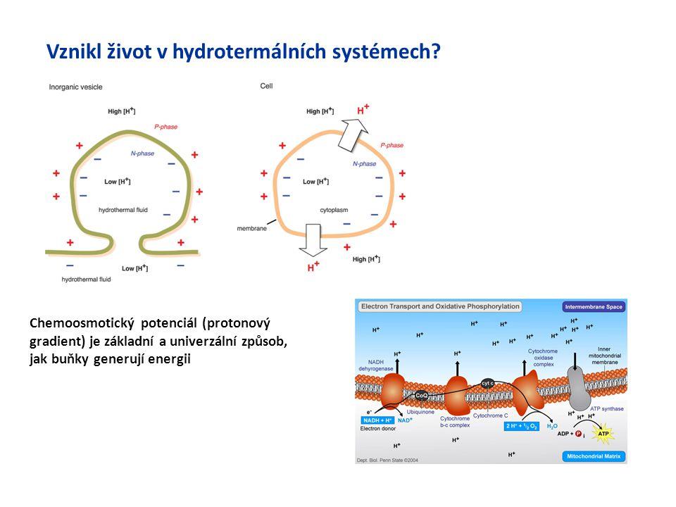 Vznikl život v hydrotermálních systémech? Chemoosmotický potenciál (protonový gradient) je základní a univerzální způsob, jak buňky generují energii