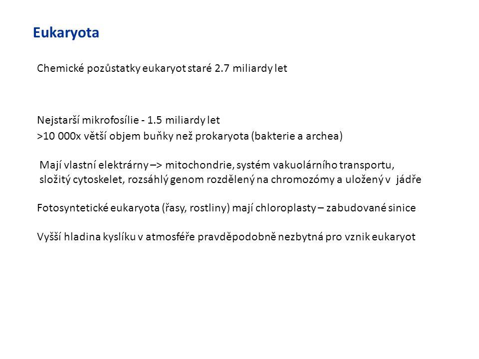 Eukaryota >10 000x větší objem buňky než prokaryota (bakterie a archea) Mají vlastní elektrárny –> mitochondrie, systém vakuolárního transportu, složi