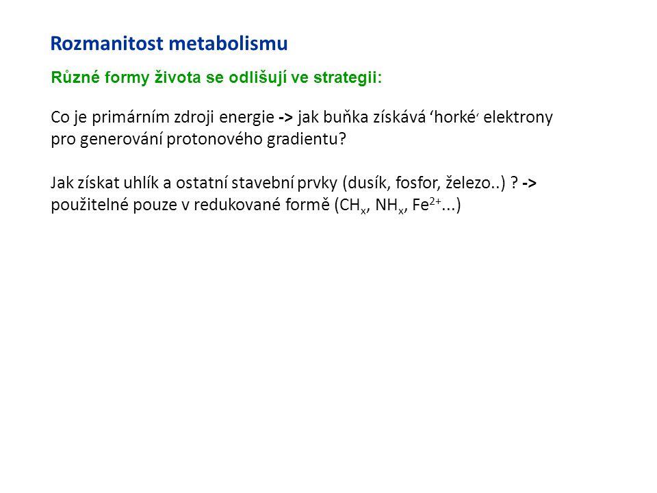 Rozmanitost metabolismu Co je primárním zdroji energie -> jak buňka získává 'horké ' elektrony pro generování protonového gradientu? Jak získat uhlík
