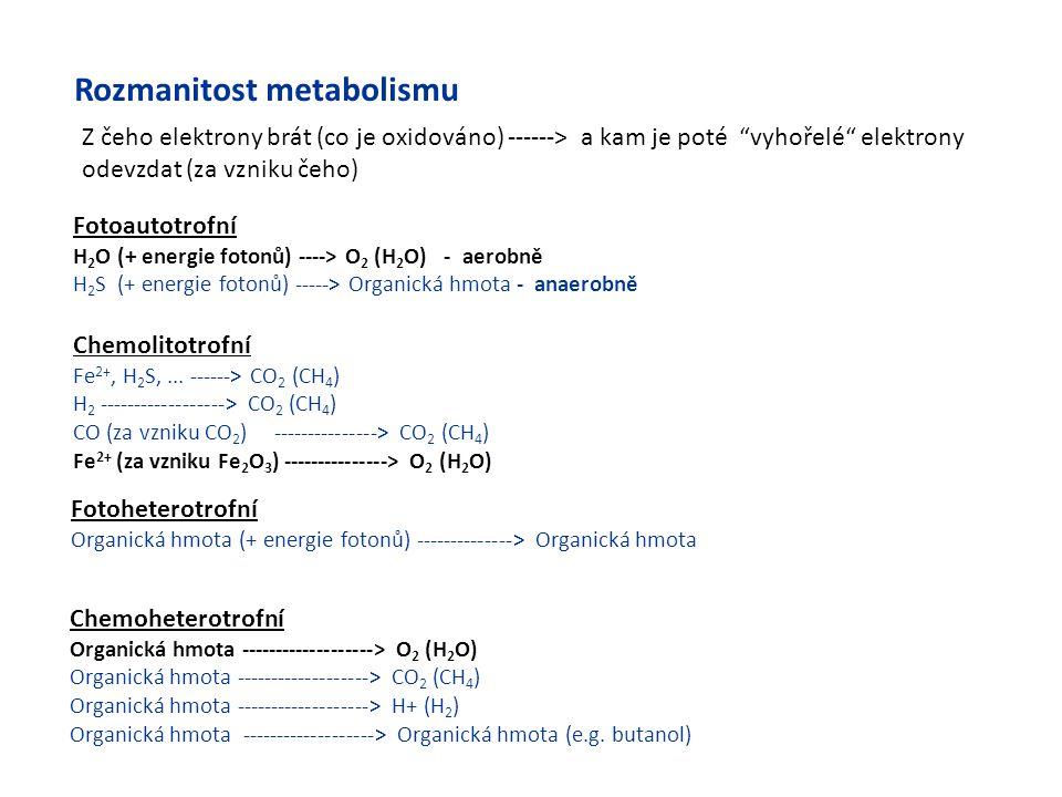 Chemoheterotrofní Organická hmota -------------------> O 2 (H 2 O) Organická hmota -------------------> CO 2 (CH 4 ) Organická hmota -----------------