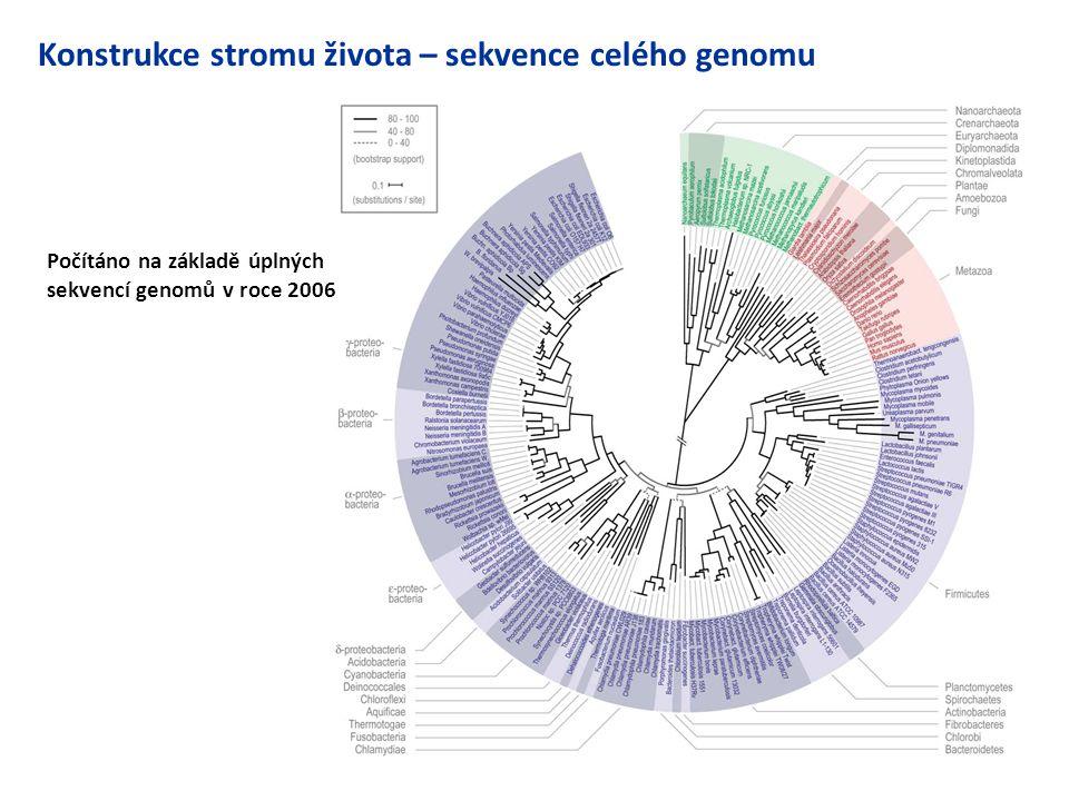 Konstrukce stromu života – sekvence celého genomu Počítáno na základě úplných sekvencí genomů v roce 2006