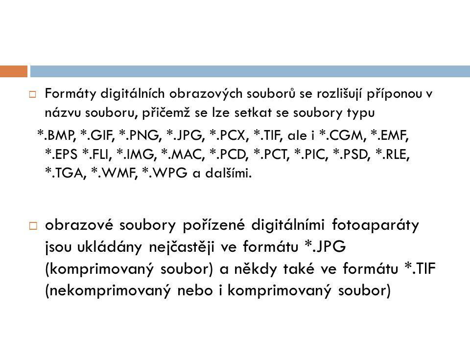  Formáty digitálních obrazových souborů se rozlišují příponou v názvu souboru, přičemž se lze setkat se soubory typu *.BMP, *.GIF, *.PNG, *.JPG, *.PCX, *.TIF, ale i *.CGM, *.EMF, *.EPS *.FLI, *.IMG, *.MAC, *.PCD, *.PCT, *.PIC, *.PSD, *.RLE, *.TGA, *.WMF, *.WPG a dalšími.