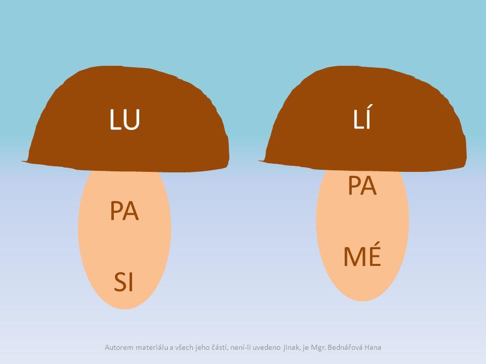 PA SI LU PA MÉ LÍ Autorem materiálu a všech jeho částí, není-li uvedeno jinak, je Mgr.