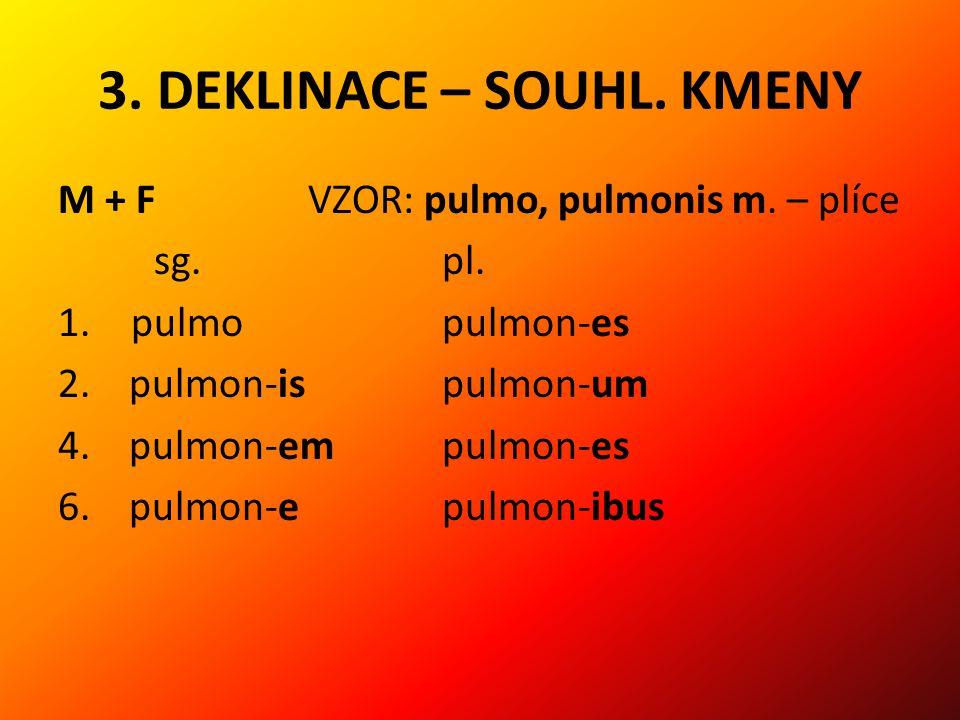 3.DEKLINACE – SOUHL. KMENY M + F VZOR: pulmo, pulmonis m.
