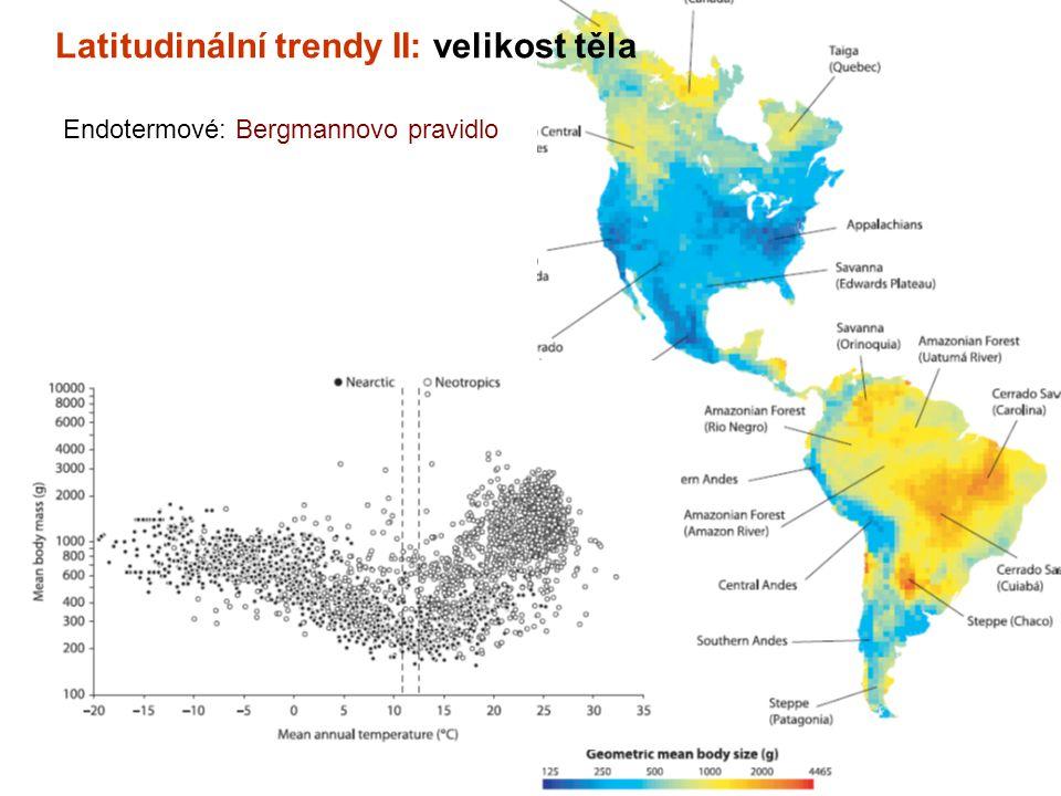 Latitudinální trendy II: velikost těla Endotermové: Bergmannovo pravidlo
