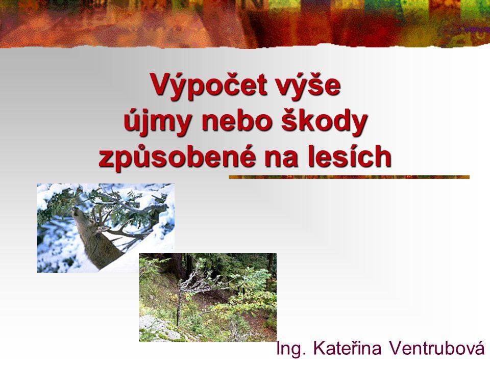 Výpočet výše újmy nebo škody způsobené na lesích Ing. Kateřina Ventrubová