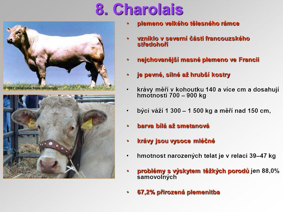 8. Charolais plemeno velkého tělesného rámceplemeno velkého tělesného rámce vzniklo v severní části francouzského středohořívzniklo v severní části fr