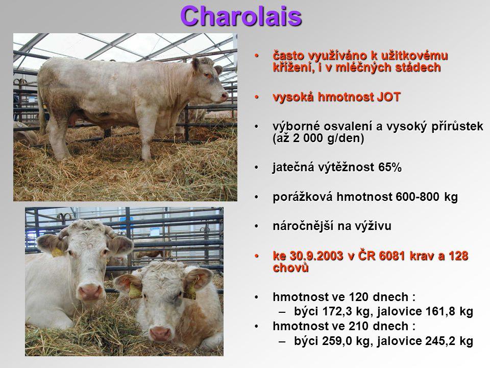 Charolais často využíváno k užitkovému křížení, i v mléčných stádechčasto využíváno k užitkovému křížení, i v mléčných stádech vysoká hmotnost JOTvyso