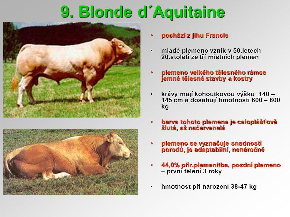 9. Blonde d´Aquitaine pochází z jihu Franciepochází z jihu Francie mladé plemeno vznik v 50.letech 20.století ze tří místních plemenmladé plemeno vzni