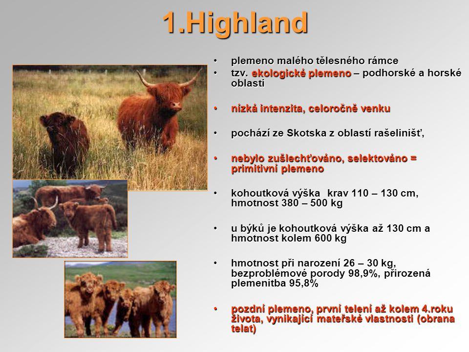 Highland různé barevné rázy – od plavé po černou,různé barevné rázy – od plavé po černou, výrazná hustá delší, ale rovná srst, dlouhé zahnuté rohy,výrazná hustá delší, ale rovná srst, dlouhé zahnuté rohy, maso je jemné a křehké, tmavě červené až černé, podobné divočiněmaso je jemné a křehké, tmavě červené až černé, podobné divočině nenáročné na výživu, odlišné přírůstky zima – léto, zvyky divoké zvěřenenáročné na výživu, odlišné přírůstky zima – léto, zvyky divoké zvěře není vhodné pro intenzivní výkrmnení vhodné pro intenzivní výkrm v ČR chováno na Šumavě, Jeseníky apod.v ČR chováno na Šumavě, Jeseníky apod.