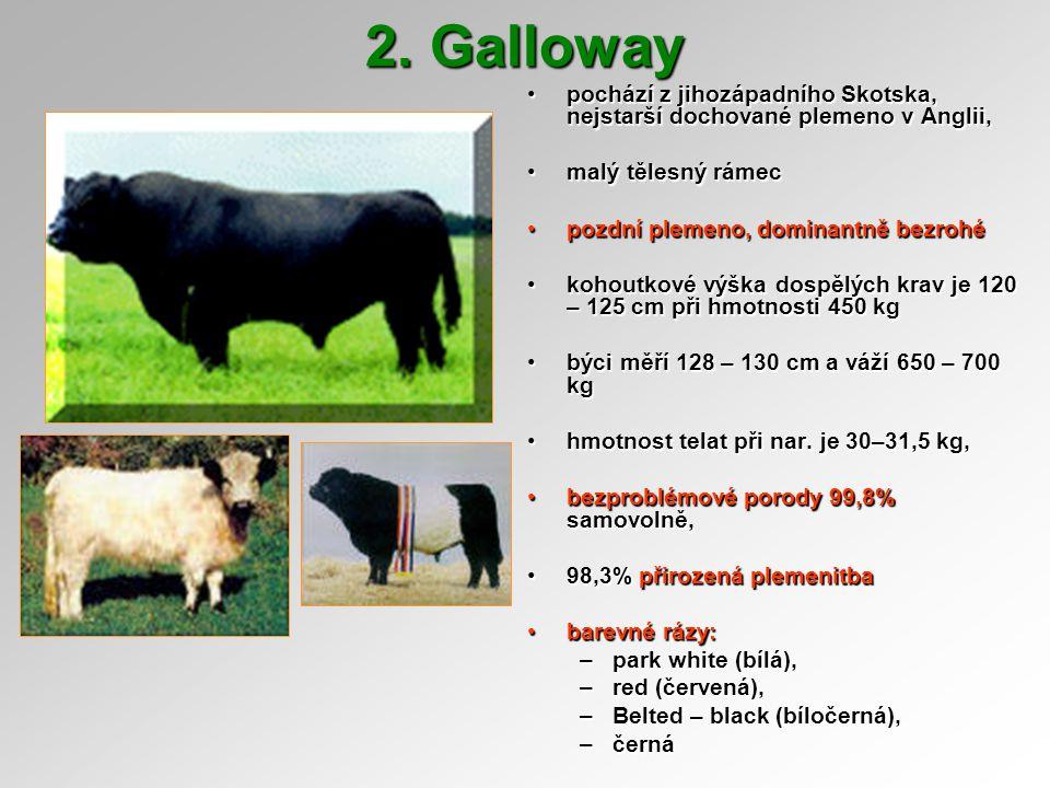 Galloway srst dlouhá, vlnitásrst dlouhá, vlnitá využívá se k udržování krajiny a produkci baby beefuvyužívá se k udržování krajiny a produkci baby beefu není náročné na výživunení náročné na výživu přírůstky dle ročního obdobípřírůstky dle ročního období –zima 0-400 g, léto cca 600 g k 30.9.2003 v ČR 526 krav, 21 chovůk 30.9.2003 v ČR 526 krav, 21 chovů hmotnost ve 120 dnech :hmotnost ve 120 dnech : –býci 147,9 kg, jalovice 136,6 kg hmotnost ve 210 dnech :hmotnost ve 210 dnech : –býci 228 kg, jalovice 205 kg