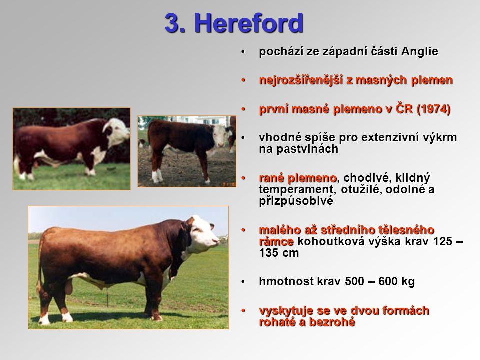 Hereford zvířata jsou červeného zbarvení, s bílou hlavou a spodní částí těla, včetně noh a ocasu, bílý pruh na kohoutekzvířata jsou červeného zbarvení, s bílou hlavou a spodní částí těla, včetně noh a ocasu, bílý pruh na kohoutek živá hmotnost telat je 34 – 41 kgživá hmotnost telat je 34 – 41 kg 97% samovolný porod97% samovolný porod 67,8% přirozená plemenitba67,8% přirozená plemenitba ke 30.9.2003 v ČR 3773 krav v 47 chovechke 30.9.2003 v ČR 3773 krav v 47 chovech porážková hmotnost 450 – 500 kgporážková hmotnost 450 – 500 kg přírůstky 100-1200 g/ks/denpřírůstky 100-1200 g/ks/den jatečná výtěžnost 58-60%jatečná výtěžnost 58-60% hmotnost ve 120 dnech :hmotnost ve 120 dnech : –býci 151,2 kg, jalovice 139,9 kg hmotnost ve 210 dnech :hmotnost ve 210 dnech : –býci 217,8 kg, jalovice 202,5 kg