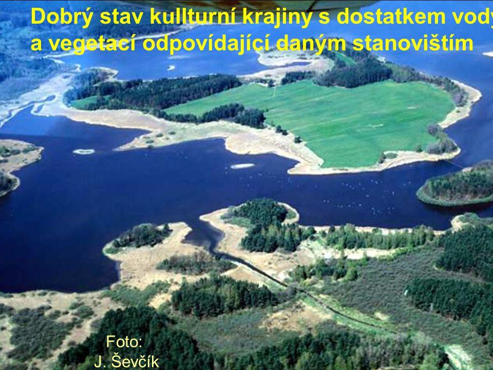 Dobrý stav kullturní krajiny s dostatkem vody a vegetací odpovídající daným stanovištím Foto: J. Ševčík