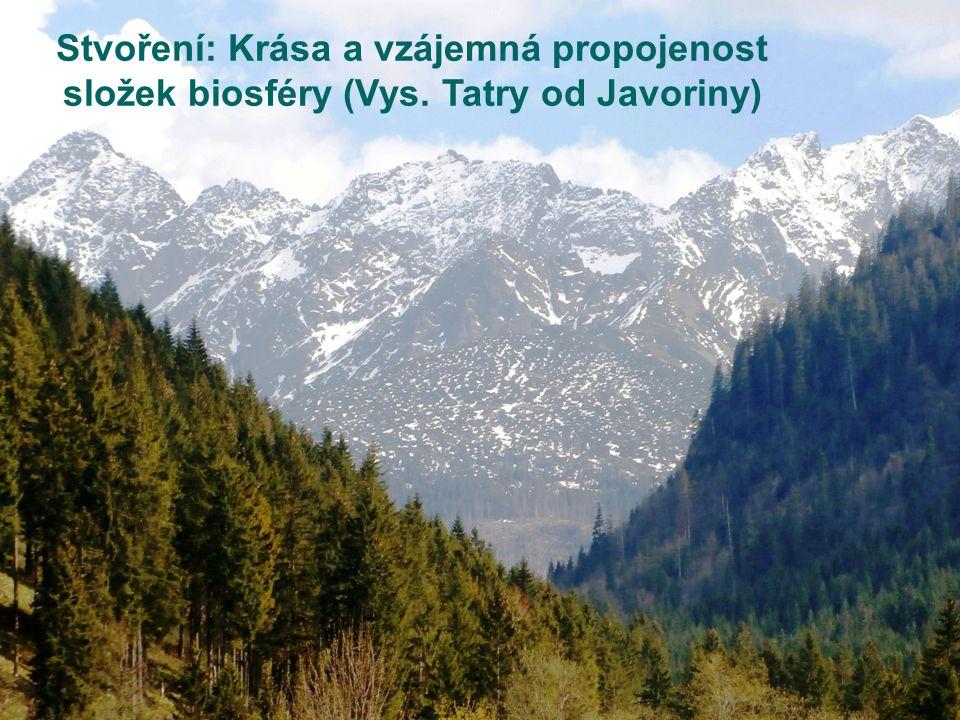 Stvoření: Krása a vzájemná propojenost složek biosféry (Vys. Tatry od Javoriny)