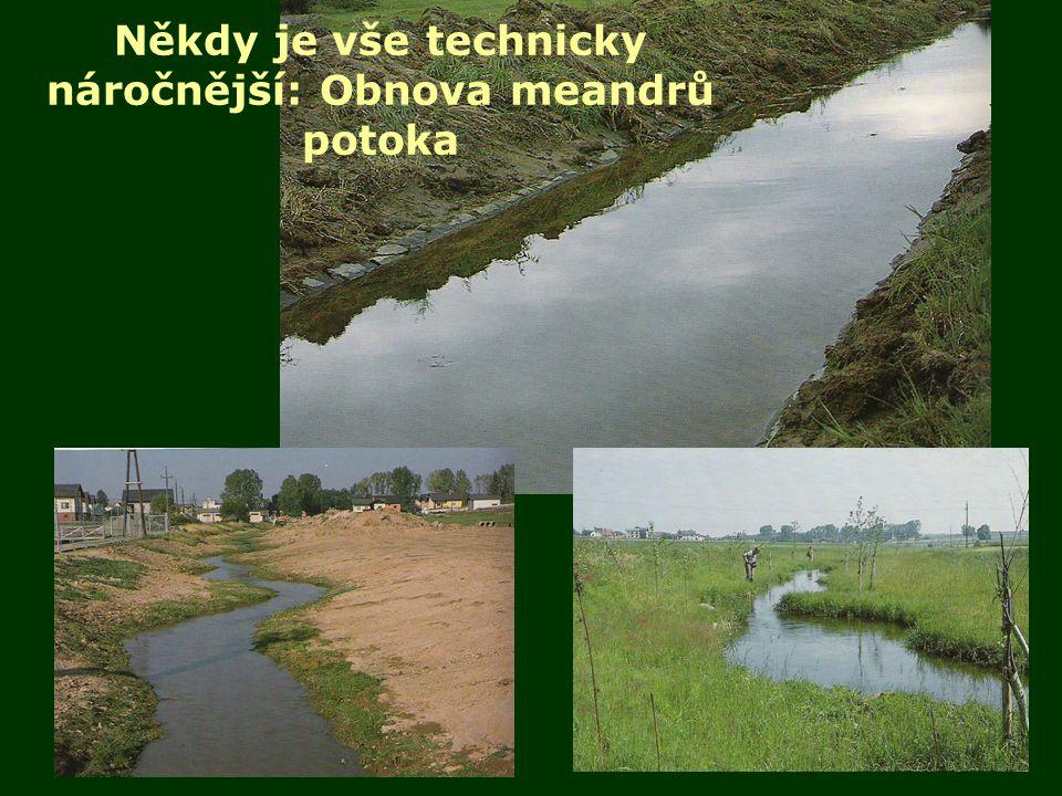 Někdy je vše technicky náročnější: Obnova meandrů potoka