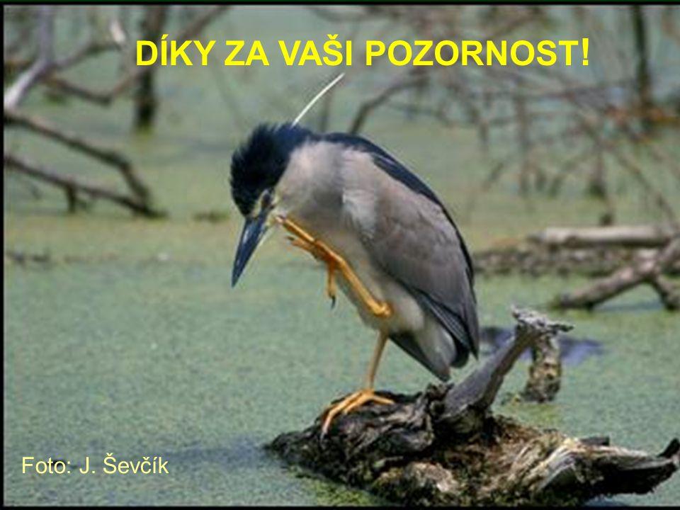 DÍKY ZA VAŠI POZORNOST ! Foto: J. Ševčík