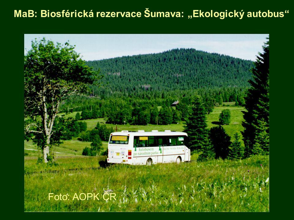 """MaB: Biosférická rezervace Šumava: """"Ekologický autobus"""" Foto: AOPK ČR"""