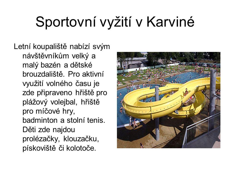Sportovní vyžití v Karviné Letní koupaliště nabízí svým návštěvníkům velký a malý bazén a dětské brouzdaliště. Pro aktivní využití volného času je zde