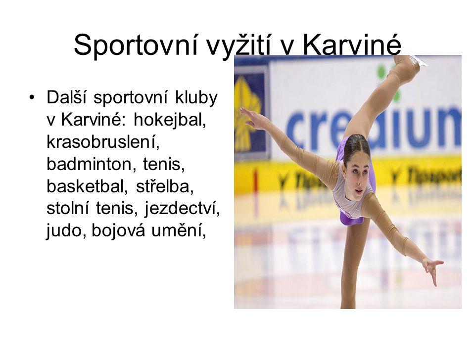 Sportovní vyžití v Karviné Další sportovní kluby v Karviné: hokejbal, krasobruslení, badminton, tenis, basketbal, střelba, stolní tenis, jezdectví, judo, bojová umění,