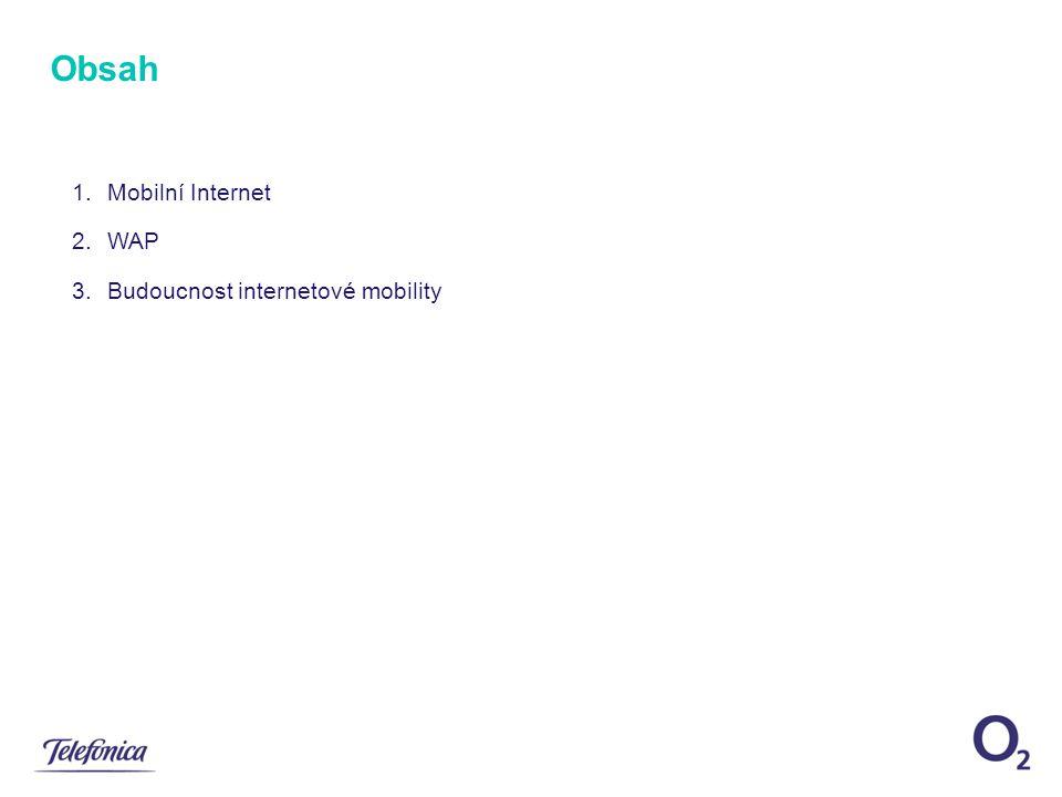 1.Mobilní Internet 2.WAP 3.Budoucnost internetové mobility Obsah
