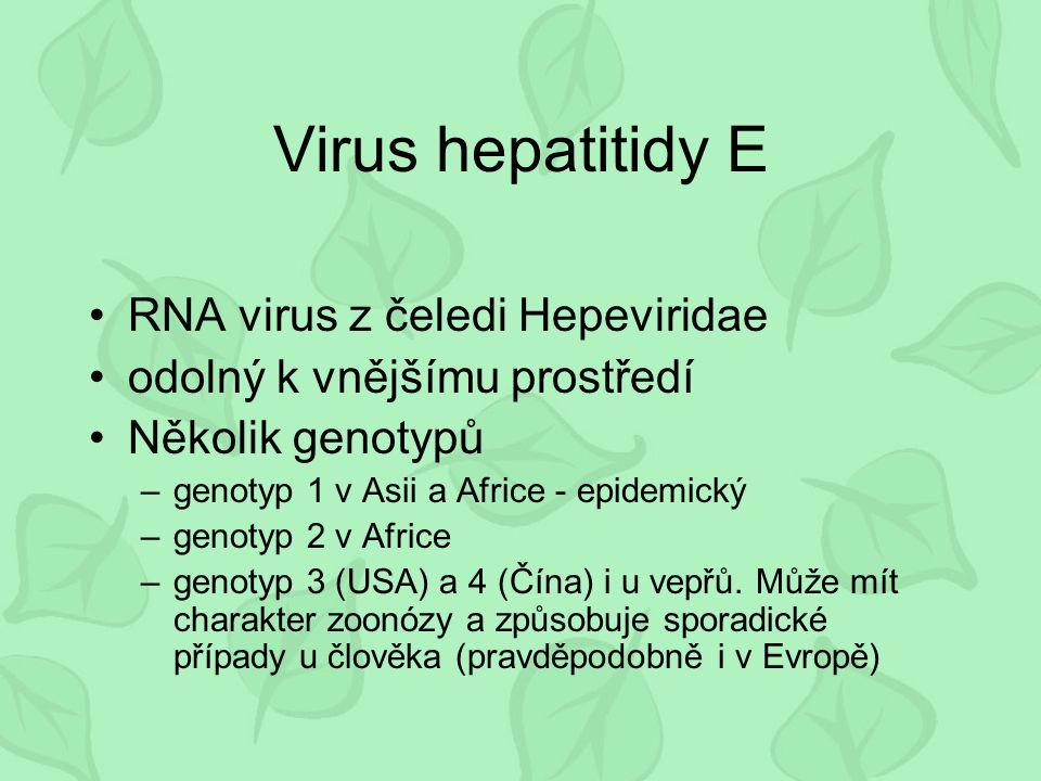 Virus hepatitidy E RNA virus z čeledi Hepeviridae odolný k vnějšímu prostředí Několik genotypů –genotyp 1 v Asii a Africe - epidemický –genotyp 2 v Af