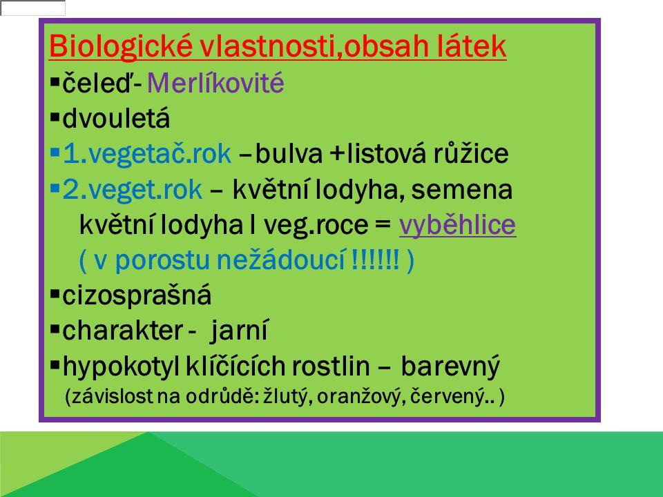 Biologické vlastnosti,obsah látek  čeleď- Merlíkovité čeleď- Merlíkovité  dvouletá dvouletá  1.vegetač.rok –bulva +listová růžice 1.vegetač.rok –bulva +listová růžice  2.veget.rok – květní lodyha, semena 2.veget.rok – květní lodyha, semena květní lodyha l veg.roce = vyběhlice ( v porostu nežádoucí !!!!!.