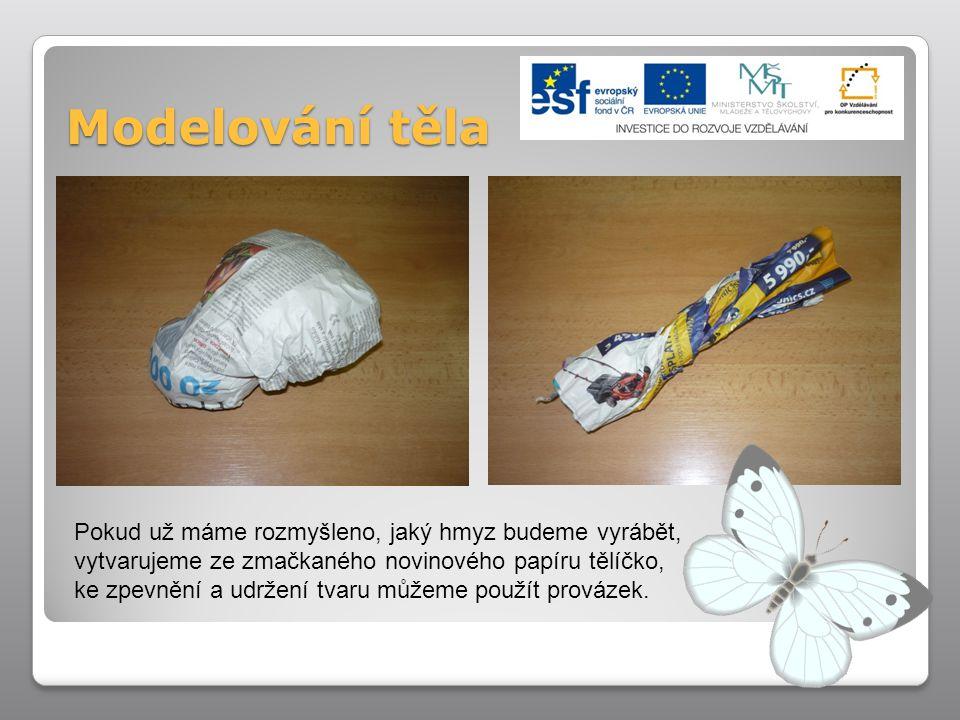 Modelování těla Pokud už máme rozmyšleno, jaký hmyz budeme vyrábět, vytvarujeme ze zmačkaného novinového papíru tělíčko, ke zpevnění a udržení tvaru m