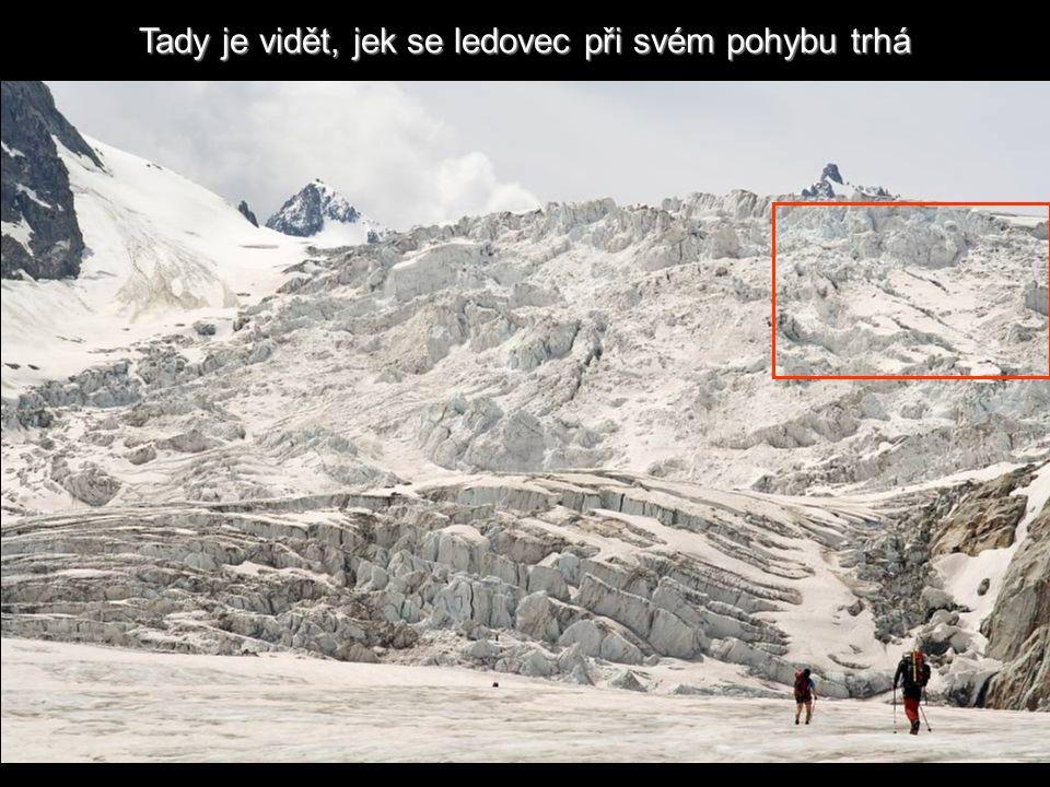 Tacul Ledovec Tacul
