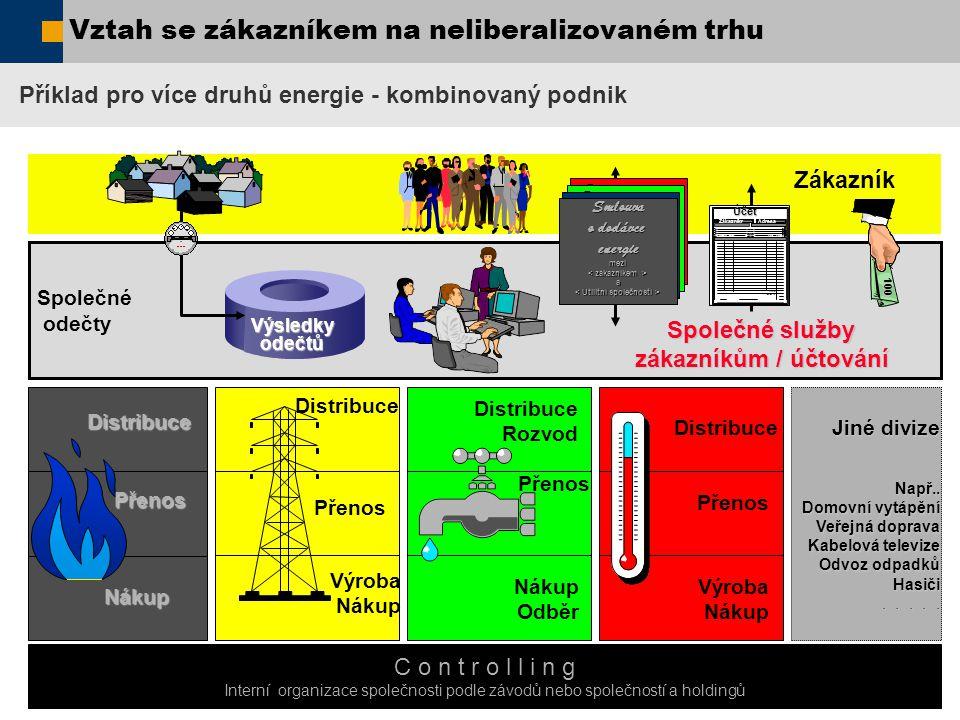  SAP AG 2006, / Pavel Hrabě / 4 Distribuční společnost Přenosová společnost Výrobní společnost Obchod s energií a poskytování služeb Jediná energie Poplatky za služby Silně regulovaná Regulovaná Konkurence Deregulovaná Společnost pro obchod s energií / Broker Zákazník 100 Výsledkyodečtů Vztah se zákazníkem na liberalizovaném trhu