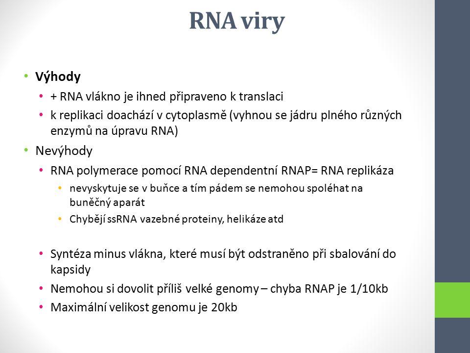 RNA viry Výhody + RNA vlákno je ihned připraveno k translaci k replikaci doachází v cytoplasmě (vyhnou se jádru plného různých enzymů na úpravu RNA) N