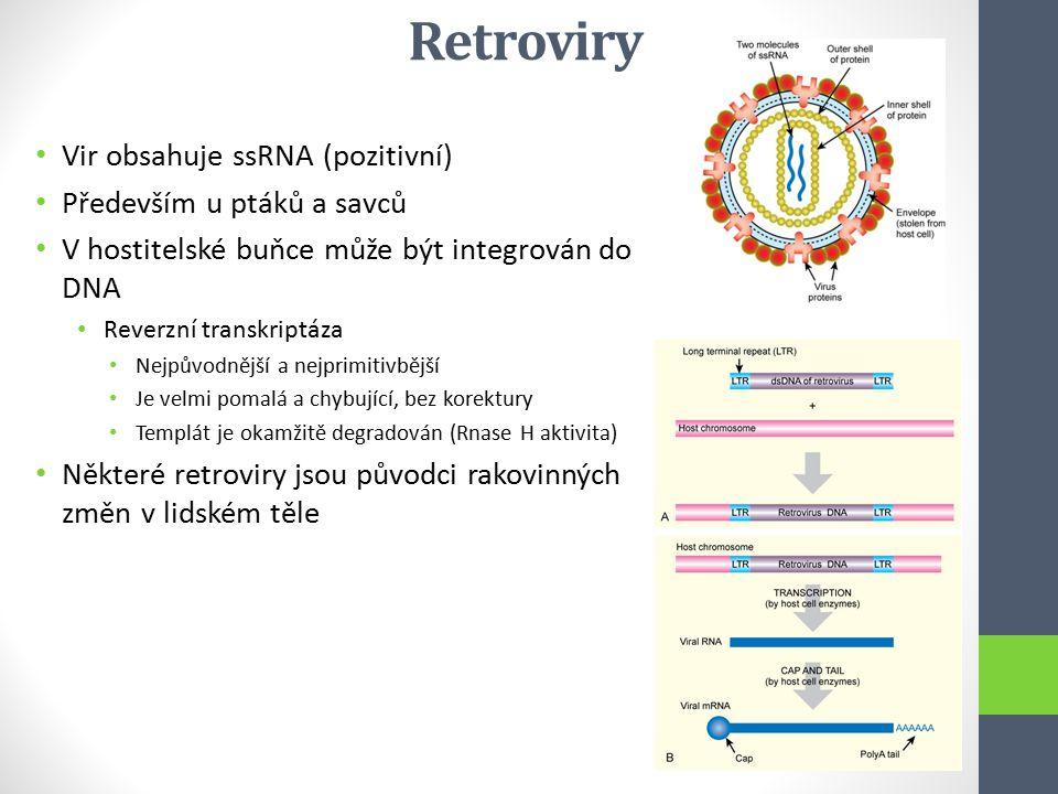 Retroviry Vir obsahuje ssRNA (pozitivní) Především u ptáků a savců V hostitelské buňce může být integrován do DNA Reverzní transkriptáza Nejpůvodnější
