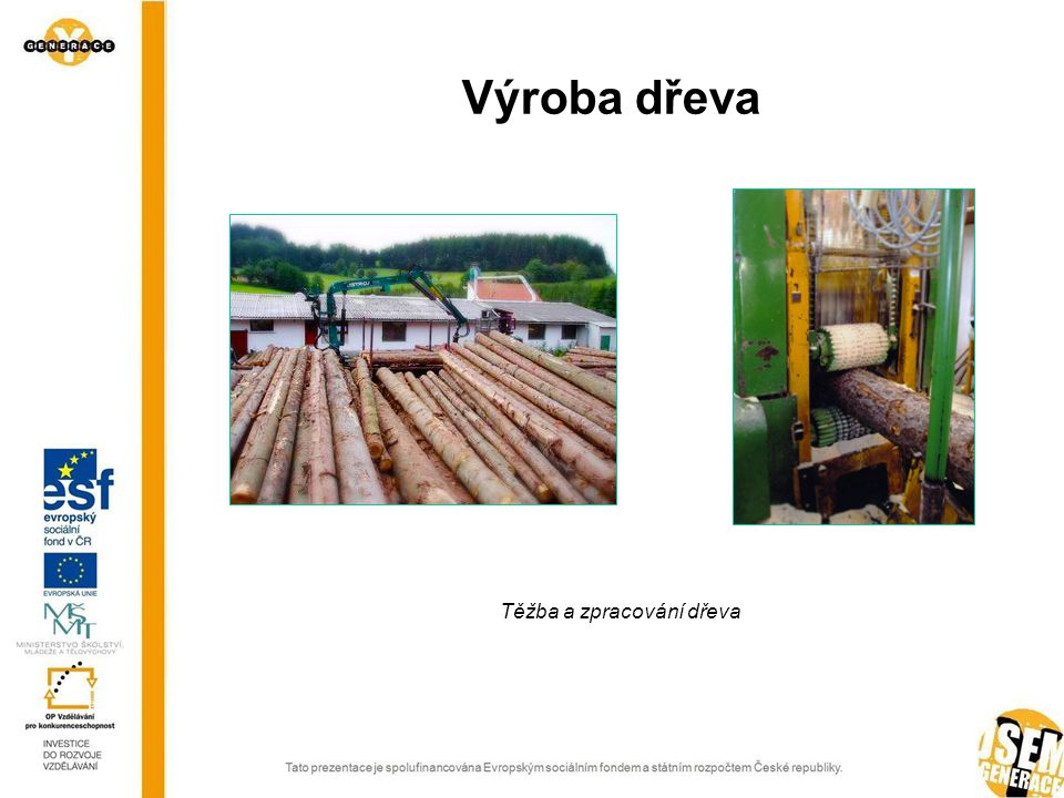Výroba dřeva Těžba a zpracování dřeva