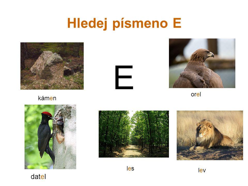 Hledej písmeno E E kámen orel lesles lev datel