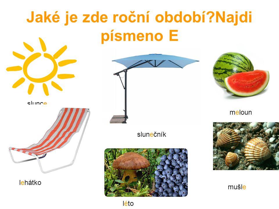 Jaké je zde roční období?Najdi písmeno E slunce slunečník lehátko léto meloun mušle