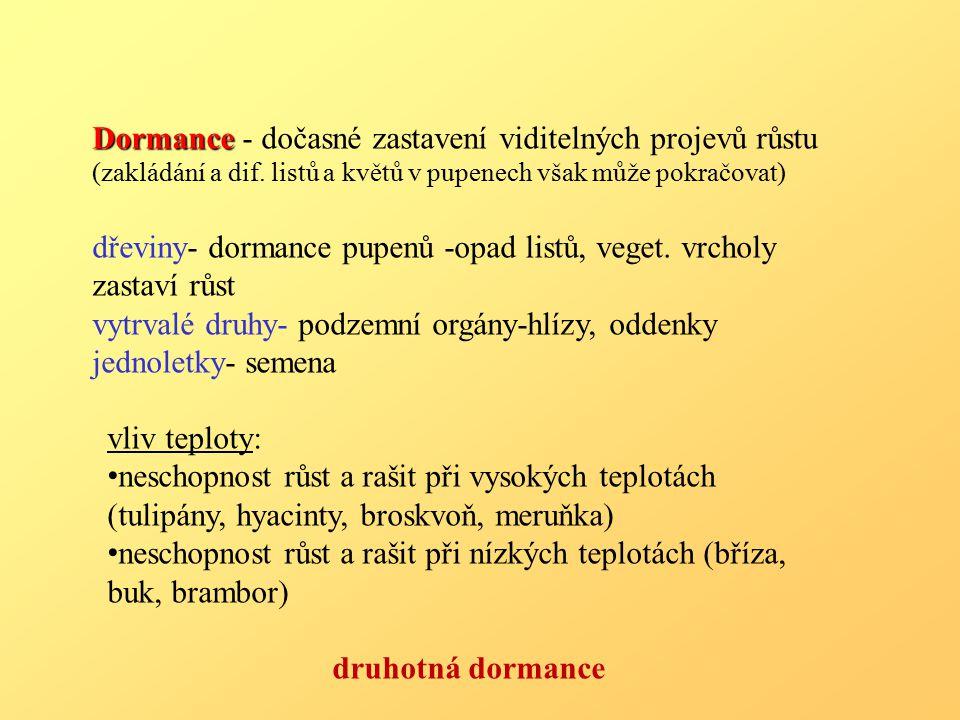 Dormance Dormance - dočasné zastavení viditelných projevů růstu (zakládání a dif.