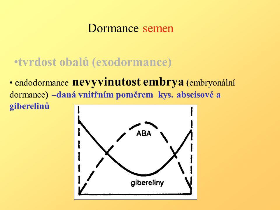 Dormance semen endodormance nevyvinutost embrya (embryonální dormance) –daná vnitřním poměrem kys.