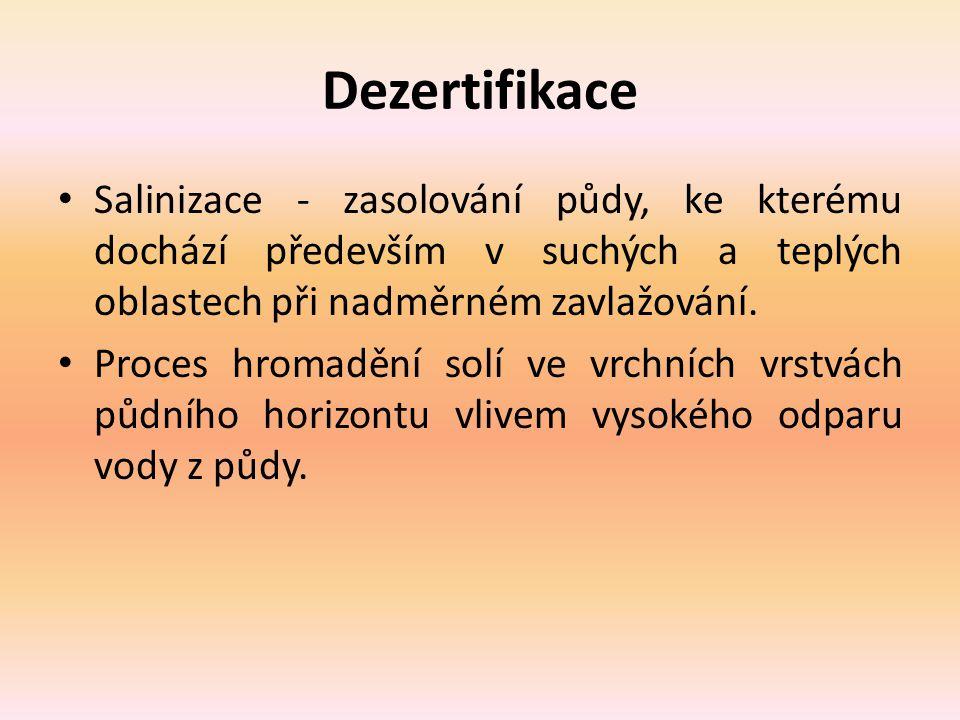 Dezertifikace Salinizace - zasolování půdy, ke kterému dochází především v suchých a teplých oblastech při nadměrném zavlažování.