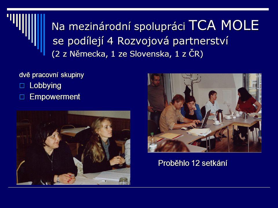 Na mezinárodní spolupráci TCA MOLE se podílejí 4 Rozvojová partnerství (2 z Německa, 1 ze Slovenska, 1 z ČR) Na mezinárodní spolupráci TCA MOLE se podílejí 4 Rozvojová partnerství (2 z Německa, 1 ze Slovenska, 1 z ČR) dvě pracovní skupiny  Lobbying  Empowerment Proběhlo 12 setkání
