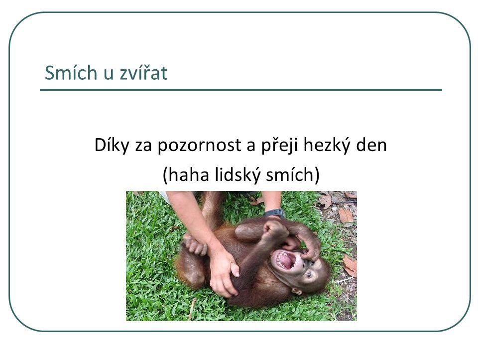Smích u zvířat Díky za pozornost a přeji hezký den (haha lidský smích)