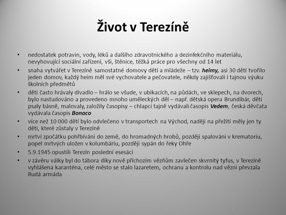 Život v Terezíně nedostatek potravin, vody, léků a dalšího zdravotnického a dezinfekčního materiálu, nevyhovující sociální zařízení, vši, štěnice, těžká práce pro všechny od 14 let snaha vytvářet v Terezíně samostatné domovy dětí a mládeže – tzv.