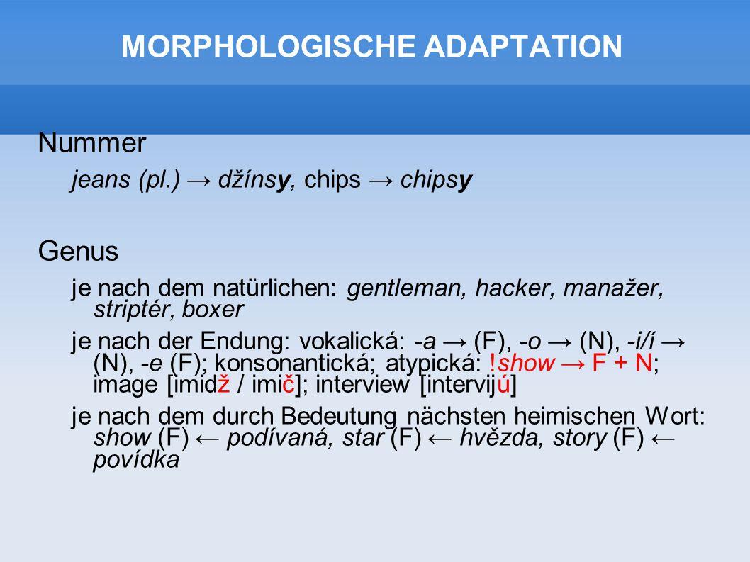 MORPHOLOGISCHE ADAPTATION Nummer jeans (pl.) → džínsy, chips → chipsy Genus je nach dem natürlichen: gentleman, hacker, manažer, striptér, boxer je nach der Endung: vokalická: -a → (F), -o → (N), -i/í → (N), -e (F); konsonantická; atypická: !show → F + N; image [imidž / imič]; interview [intervijú] je nach dem durch Bedeutung nächsten heimischen Wort: show (F) ← podívaná, star (F) ← hvězda, story (F) ← povídka