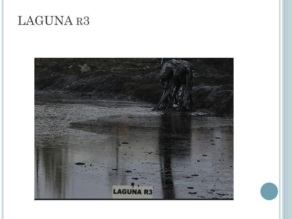 LAGUNA R 3